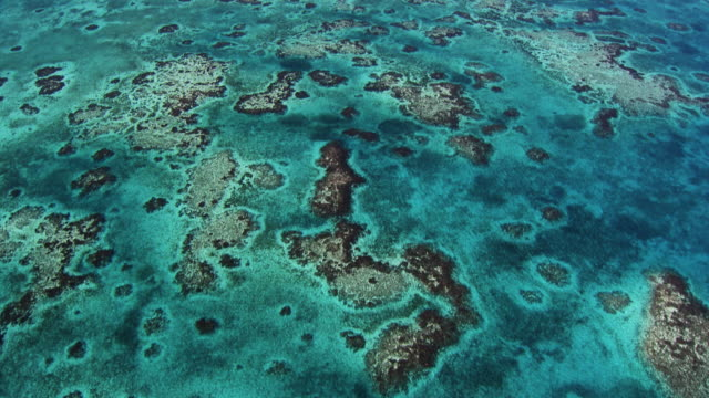 belize: reefs and little islands - atlantic islands stock videos & royalty-free footage
