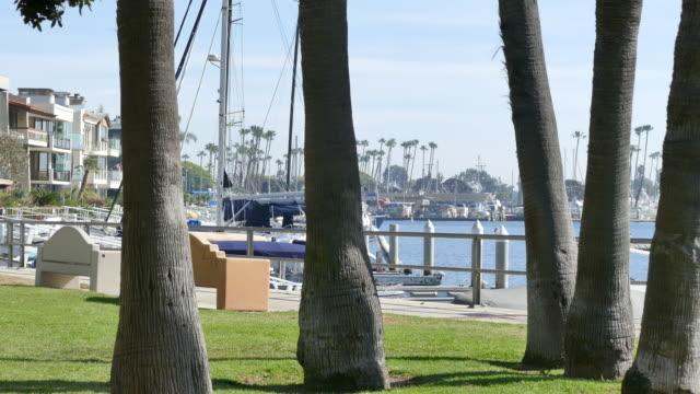 vídeos de stock e filmes b-roll de belmont shore harbor houses along the shore camera pans to a white cabin cruiser by the dock long beach california - long beach califórnia