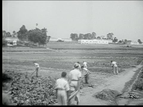 1940 belo horizonte - horizonte stock videos & royalty-free footage