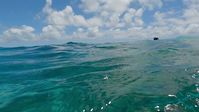 below and above water surface, coral reef underwater, sky and clouds - reef stock videos & royalty-free footage