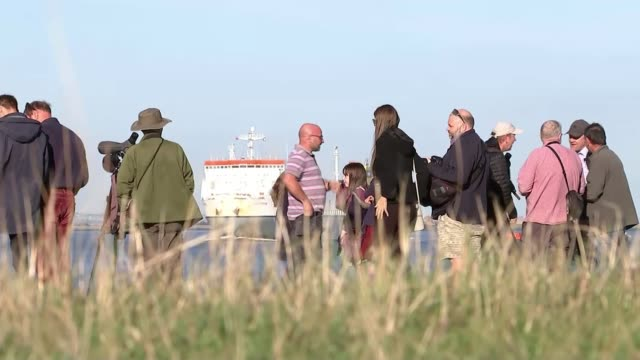 Beluga whale spotted in River Thames ENGLAND Thames Estuary EXT Beluga whale surfacing on River Thames Onlookers on river bank Dave Andrews interview...