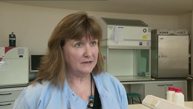 traces of human tissue found on toy car and sandal england south yorkshire sheffield int professor lorna dawson interview sot - south yorkshire stock videos and b-roll footage