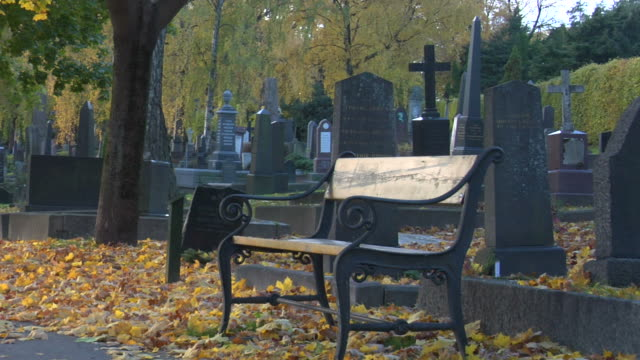 bench and cemetery - tombstone stock videos and b-roll footage