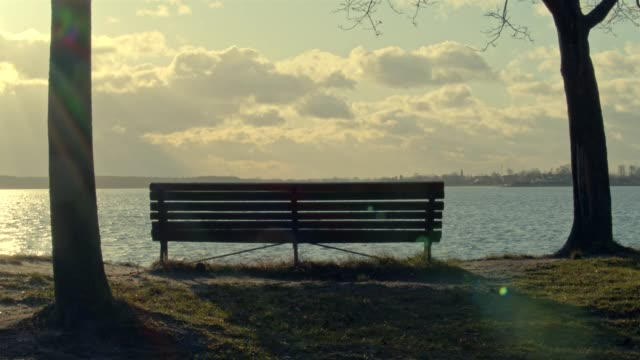 bench at lake - bench stock videos & royalty-free footage