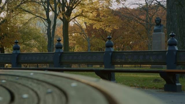 vídeos y material grabado en eventos de stock de banco en central park ciudad de nueva york del atardecer de otoño - mancha solar