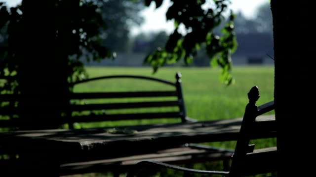 Bench - Stock Footage