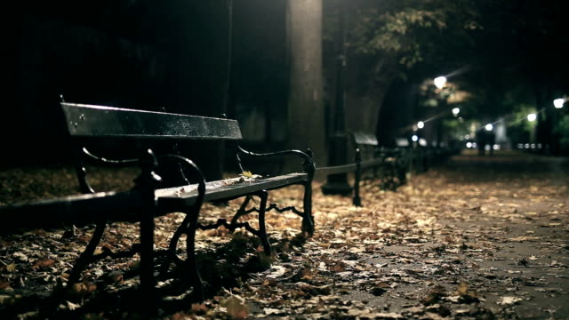bench, walking park, strong wind, night, rain - park bench stock videos & royalty-free footage