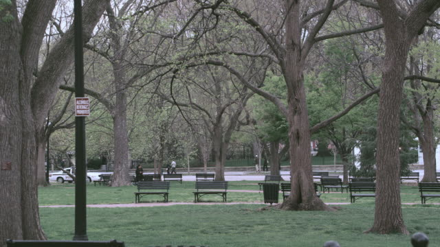 HA Benches, trees, and pedestrians in Lafayette Park / Washington, D.C., United States