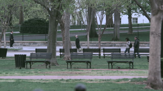 selective focus benches, trees, and pedestrians in lafayette park / washington, d.c., united states - ベンチ点の映像素材/bロール