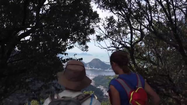 beneath the atlantic forest's thick canopy in brazil an 8,000 kilometre trail stretching the full length of the country is being opened up which will... - kilometre stock videos & royalty-free footage
