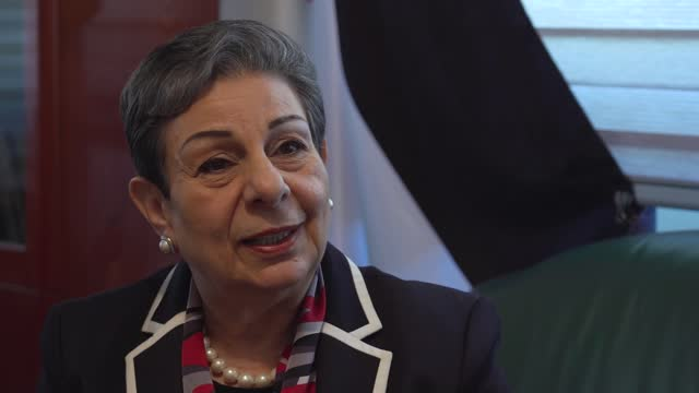 benjamin netanyahu dismisses requests for israel to wind down attacks; palestine: ramallah: int dr hanan ashrawi interview sot ashrawi speaking to... - war and conflict stock videos & royalty-free footage