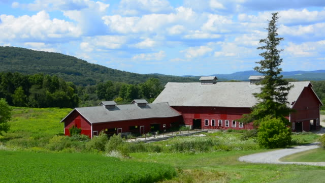 Bennington Vermont old red barn with farm in farming business with sunshine summer clouds
