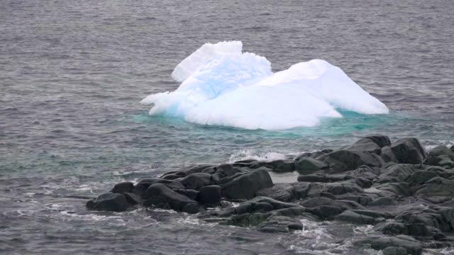 bergy bit floating and rotation offshore hydrurga rocks, antarctic peninsula, southern ocean - antarctic peninsula stock videos & royalty-free footage