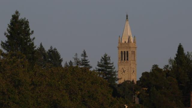 berkeley landmark, campanile, belltower at dusk, seen through trees, shot in 4k. - school bell stock videos & royalty-free footage