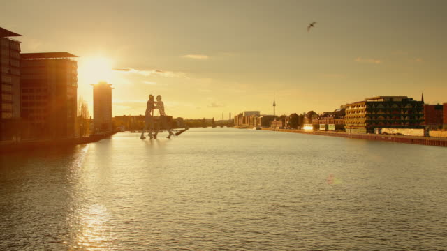 berlin spree skyline in summer with flying birds and sunset - establishing shot stock-videos und b-roll-filmmaterial