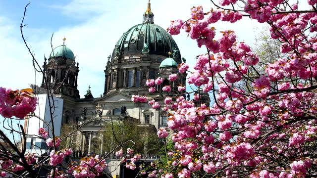 Berliner Dom in Spring