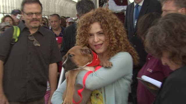 bernadette peters at the bernadette peters visits the empire state building at new york ny - バーナデット ピータース点の映像素材/bロール