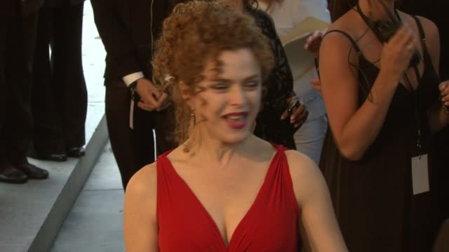 bernadette peters at the the 2007 cfda awards at new york public library in new york new york on june 4 2007 - バーナデット ピータース点の映像素材/bロール
