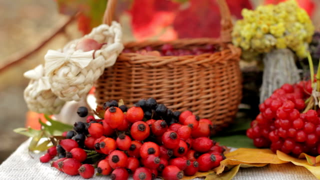 berries, herbs, glass mug of tea with lemon, some honey - cranberry stock videos & royalty-free footage