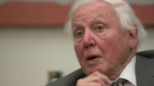 *best audio available* sir david attenborough say politicians can learn international cooperation from the example of the science community. his... - audio available bildbanksvideor och videomaterial från bakom kulisserna