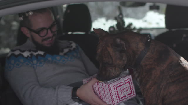 Best Friends Celebrating Christmas Inside The Car