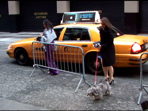 Betheny Frankel's dog is rumored to be ring bearer at the Celebrity Video Sightings in New York at New York NY