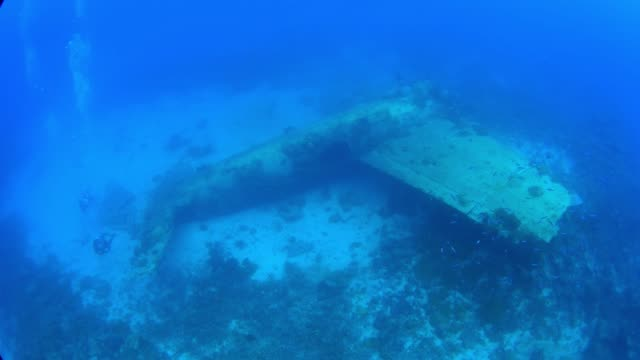 betty bomber, mitsubishi g4m, underwater airplane, truk lagoon, chuuk micronesia - 1944 stock videos & royalty-free footage