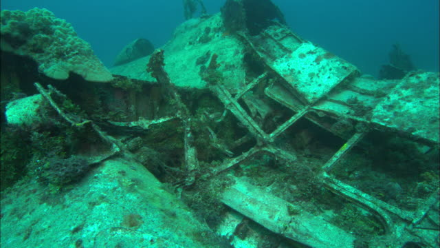 Betty Bomber, Wing, Chuuk Lagoon, South Pacific