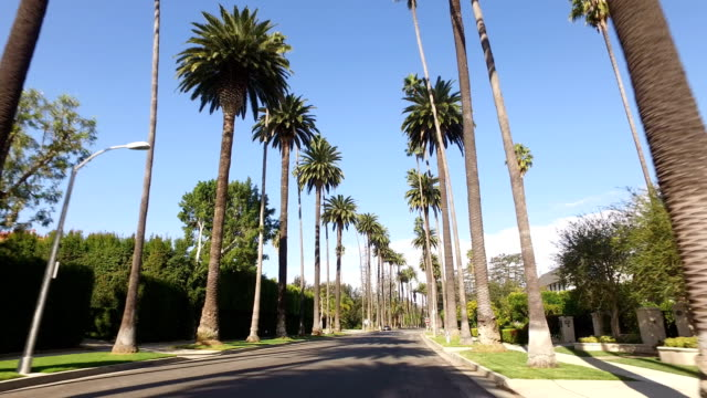 beverly hills, california - avenue stock videos & royalty-free footage