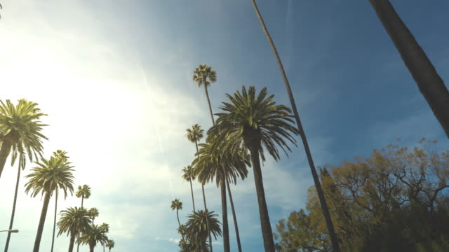Beverly Hills California