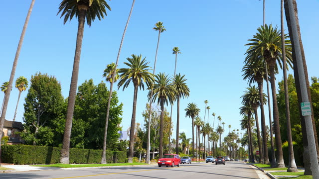 Beverly Hills is a home to many actors and celebrities The city includes the Rodeo Drive shopping district