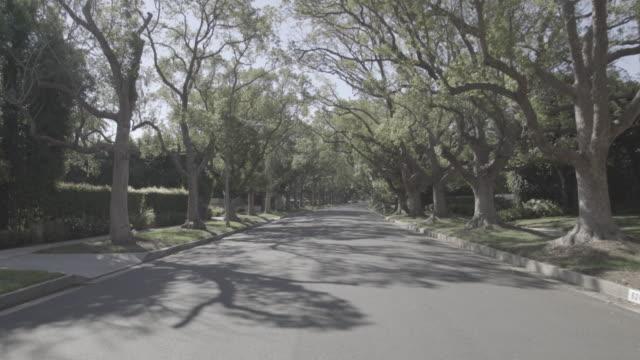 beverly hills, los angeles - treelined stock videos & royalty-free footage