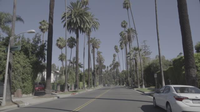 beverly hills, los angeles - von bäumen gesäumt stock-videos und b-roll-filmmaterial