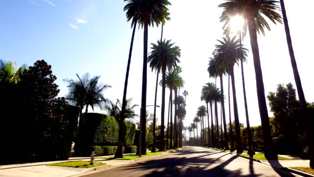 beverly hills - boulevard video stock e b–roll