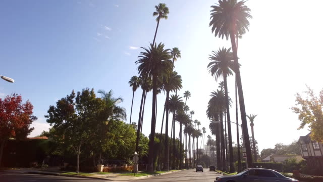 stockvideo's en b-roll-footage met beverly hills - boulevard