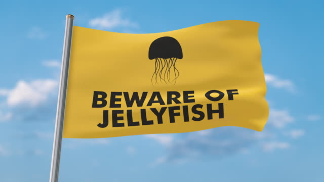 beware of jellyfish waving flag (luma matte included so you can put your own background) - warning sign stock videos & royalty-free footage