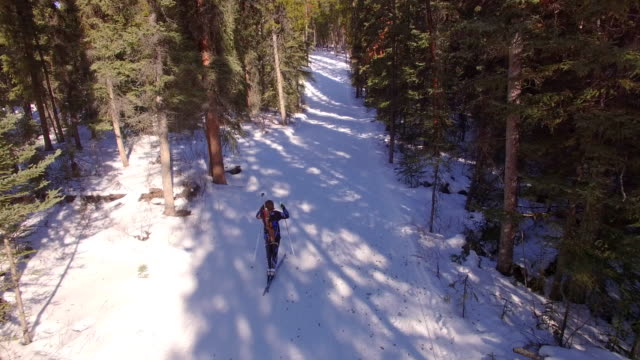Biathlon Skier Skiing through the Forest