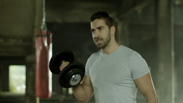 vídeos y material grabado en eventos de stock de bíceps de ejercicios - forzudo