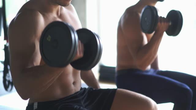 bicep workout. - avambraccio video stock e b–roll
