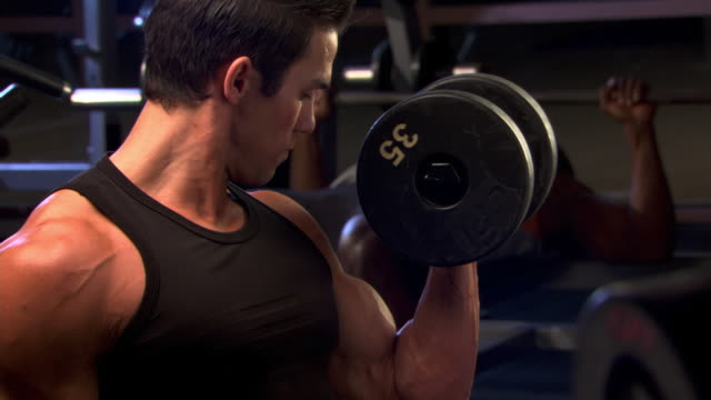 biceps curls - see other clips from this shoot 1272 stock videos and b-roll footage