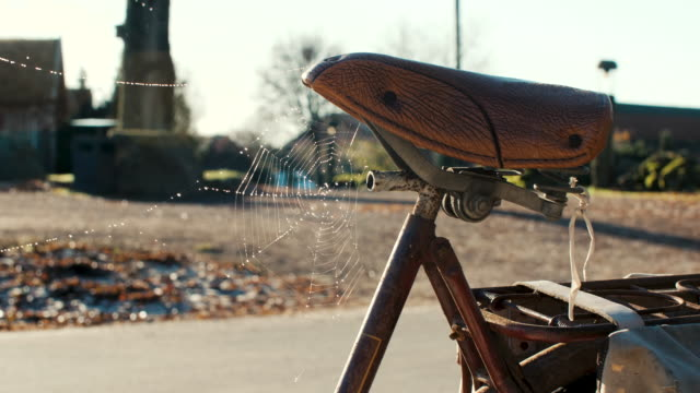 bicycle saddle with spider web - saddle stock videos & royalty-free footage