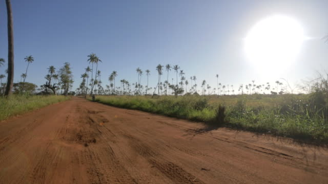 bicycles approaching along dirt road with palm trees along horizon and large sun in background  - インドネシア点の映像素材/bロール