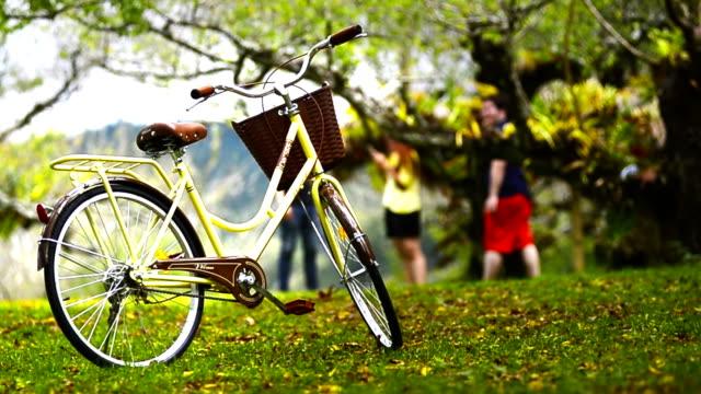 vidéos et rushes de les vélos garés dans le magnifique jardin - se garer