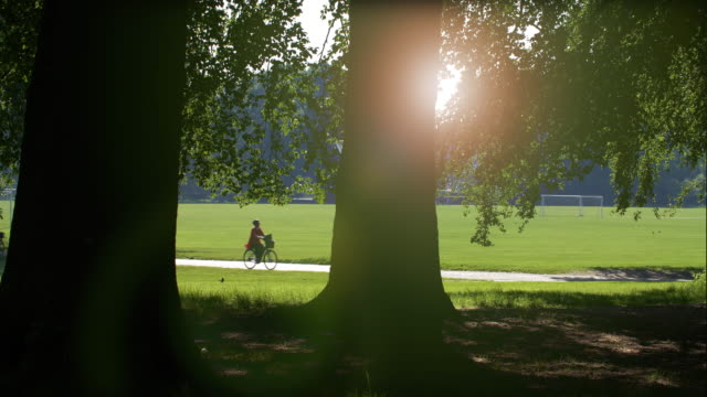 bicycling - copenhagen stock videos & royalty-free footage