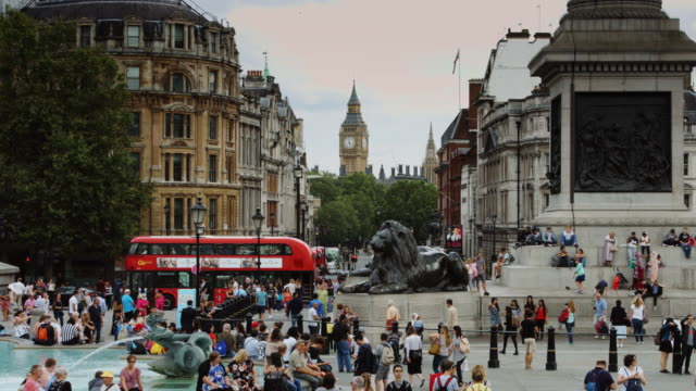 big ben and trafalgar square, london - admiral nelson stock videos and b-roll footage