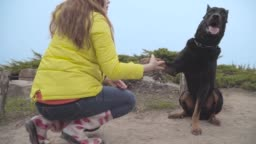 Big black doberman giving paw to young Caucasian woman in yellow coat. Girl with long red hair training her pet outdoors. Lady with her animal friend resting at weekends.