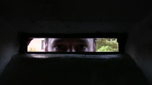 big brother - peeking stock videos and b-roll footage
