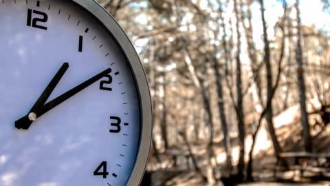 vidéos et rushes de grande horloge en forêt - temps limité