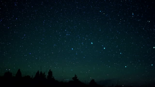 big dipper with grass and trees silhouette over steens mountain - constellation stock videos & royalty-free footage