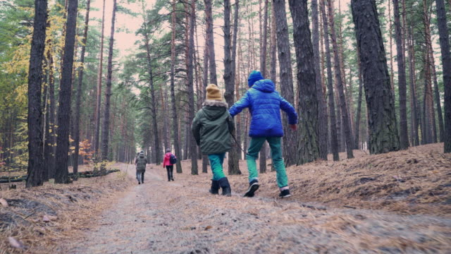 stockvideo's en b-roll-footage met grote familie wandelen in de herfst bos - brother